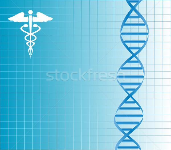 DNA strand Stock photo © soleilc