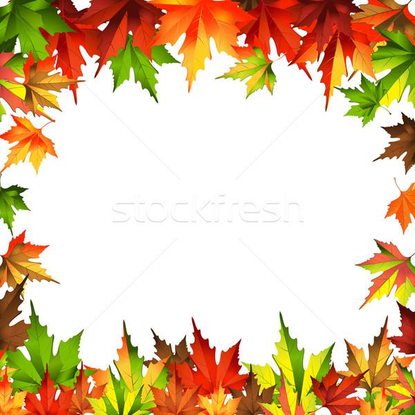 Keret keret őszi levelek izolált fehér 10 Stock fotó © sonia_ai