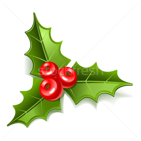 омела белая Рождества листьев иллюстрация лист зима Сток-фото © sonia_ai