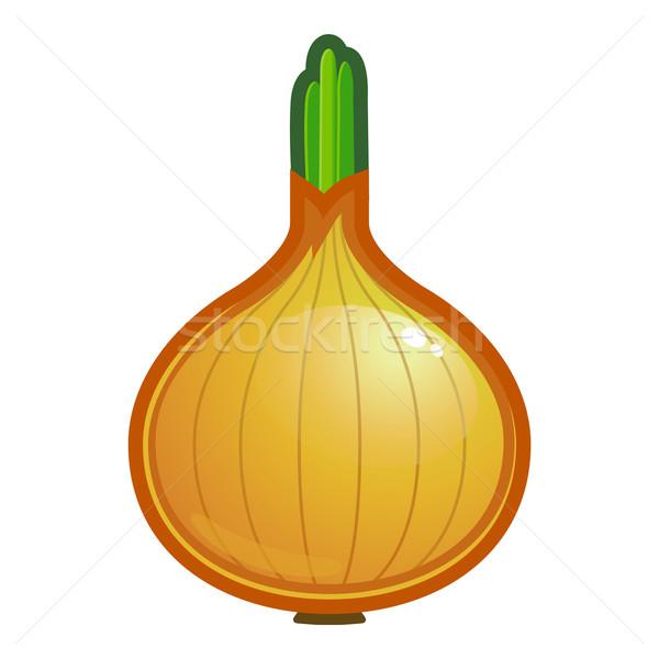 Сток-фото: лука · растительное · сырой · продовольствие · белый · желтый