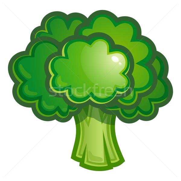 Illusztráció zöld brokkoli zöldség étel Stock fotó © sonia_ai