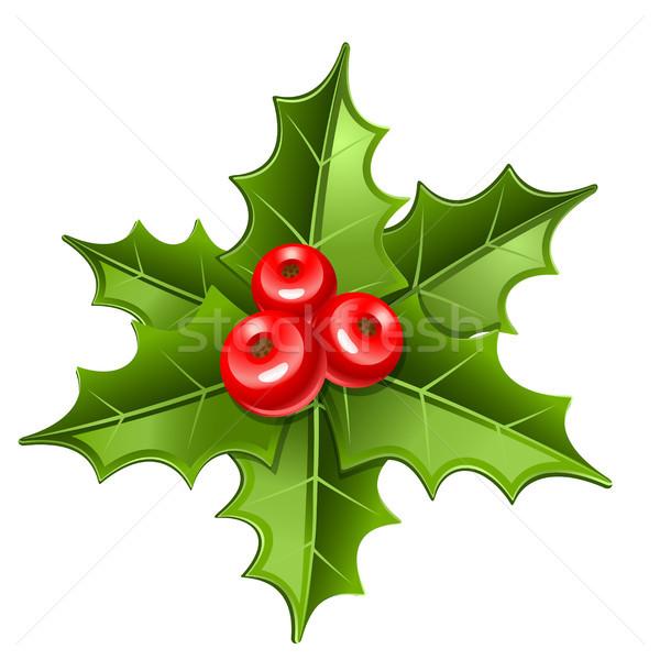 Karácsony fagyöngy ikon izolált fehér levél Stock fotó © sonia_ai