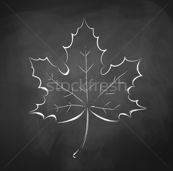 Autumn leaf Stock photo © Sonya_illustrations