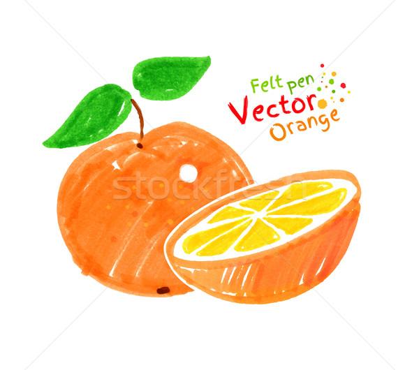 Turuncu meyve vektör kalem çocuk çizim arka plan Stok fotoğraf © Sonya_illustrations