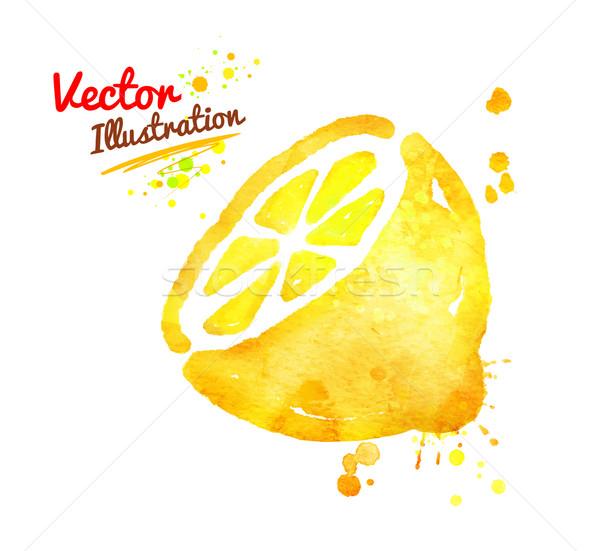 Aquarel citroen vector half verf Stockfoto © Sonya_illustrations