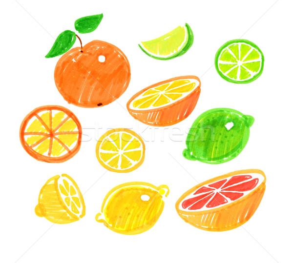 Tekening citrus fruit pen vruchten kunst oranje Stockfoto © Sonya_illustrations