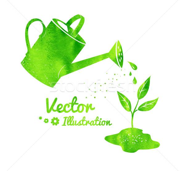 Sulama büyüyen bahçıvanlık vektör bahar Stok fotoğraf © Sonya_illustrations