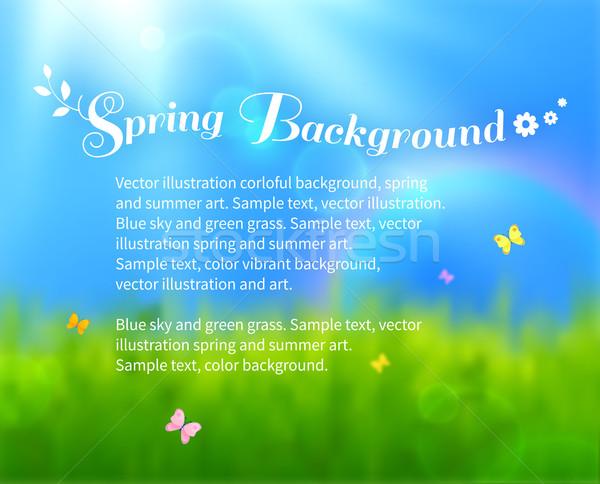 Foto stock: Soleado · pradera · borroso · primavera · vector · colorido