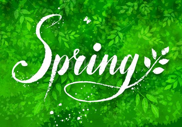 Dessinés à la main vecteur printemps mot grunge vert Photo stock © Sonya_illustrations