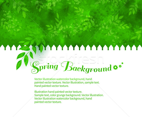 Background with green shrubs Stock photo © Sonya_illustrations