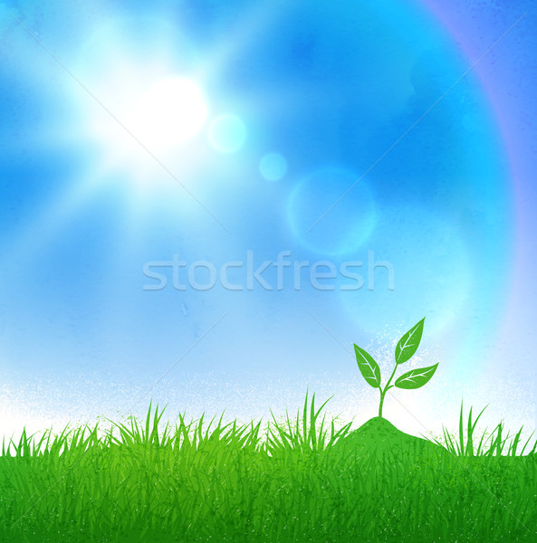 Growing sprout and sunlight Stock photo © Sonya_illustrations