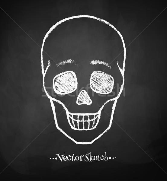 Schoolbord tekening schedel grunge textuur kunst Stockfoto © Sonya_illustrations