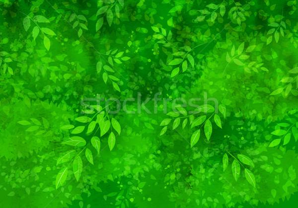 Сток-фото: листьев · весны · лет · вектора · Гранж · зеленый