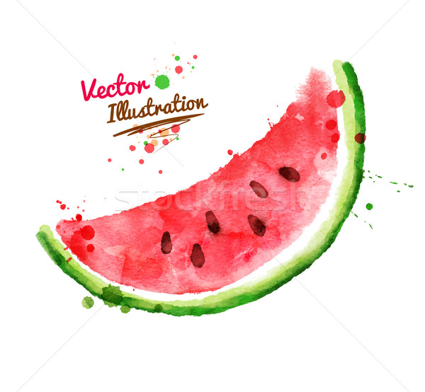 Watercolor watermelon. Stock photo © Sonya_illustrations