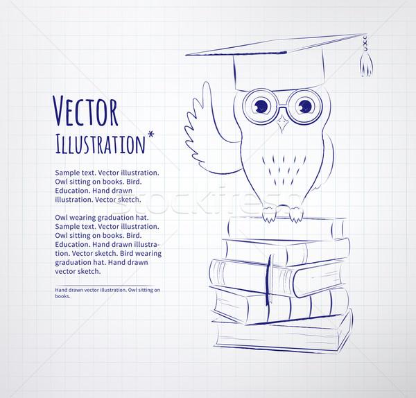 Bagoly ül könyvek vektor kréta rajzolt Stock fotó © Sonya_illustrations