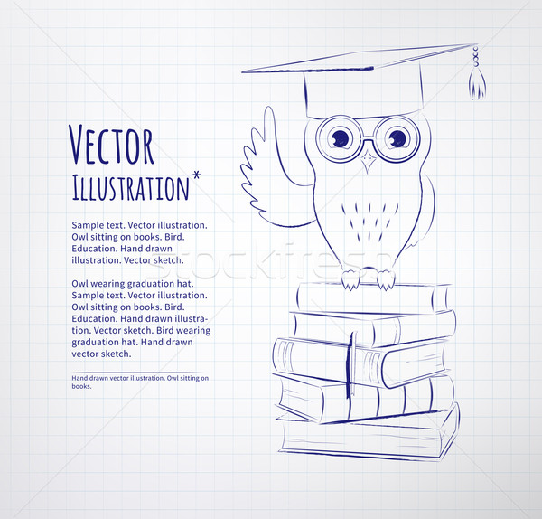 Búho sesión libros vector tiza Foto stock © Sonya_illustrations