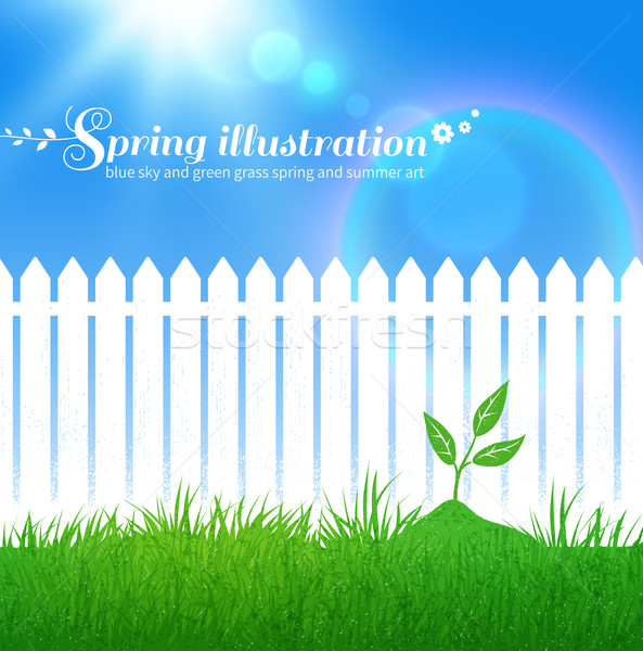 Primavera creciente vector jardín blanco Foto stock © Sonya_illustrations