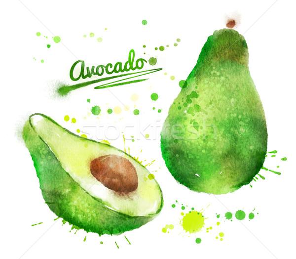 Acquerello avocado illustrazione vernice Foto d'archivio © Sonya_illustrations