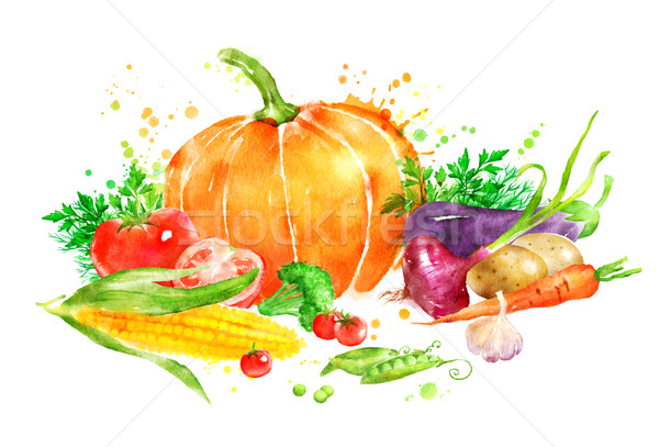 Stockfoto: Groenten · aquarel · illustratie · pompoen · mais
