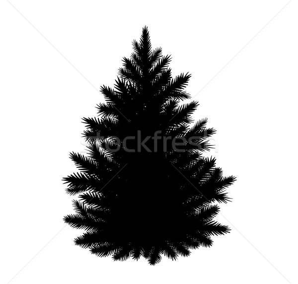 Fir-tree silhouette Stock photo © Sonya_illustrations