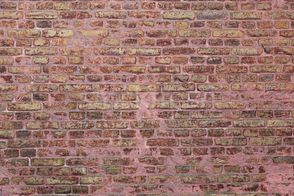 Brick wall Stock photo © sophie_mcaulay