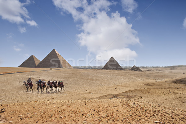 Pyramids of Giza Stock photo © sophie_mcaulay