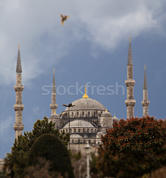 Blue Mosque  Stock photo © sophie_mcaulay