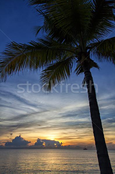 Thailand sunset/sunrise Stock photo © sophie_mcaulay
