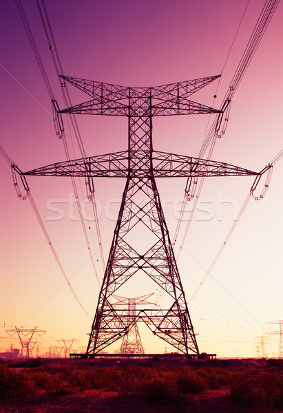 Pylons and cables look like an installation of art Stock photo © SophieJames