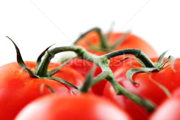 Organique vigne tomates coup blanche fruits Photo stock © SophieJames