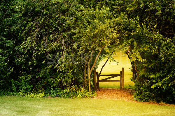 Secret Garden Stock photo © soupstock