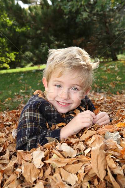 Glimlachend jongen bladeren gelukkig Stockfoto © soupstock