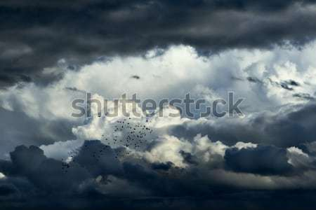 Storm Clouds Stock photo © soupstock