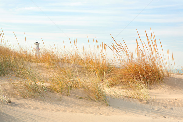 Plage nouvelle Michigan dune herbe Photo stock © soupstock