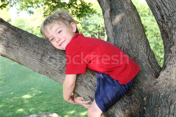 Uśmiechnięty chłopca drzewo młody chłopak wspinaczki Zdjęcia stock © soupstock