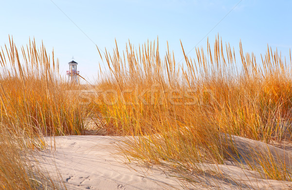 Dune phare distance or plage Photo stock © soupstock