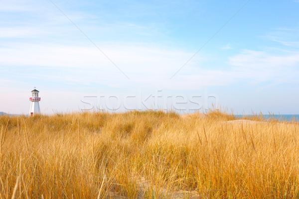 Tengerpart új Michigan közelkép dűne fű Stock fotó © soupstock
