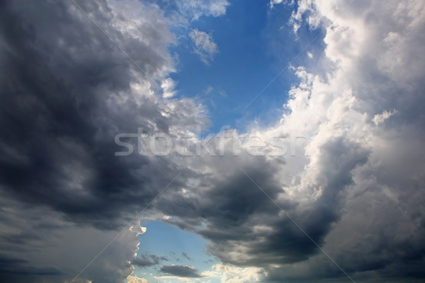 A break in the Storm  Stock photo © soupstock