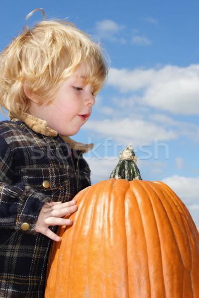 Zucca guardando bambini bambino Foto d'archivio © soupstock
