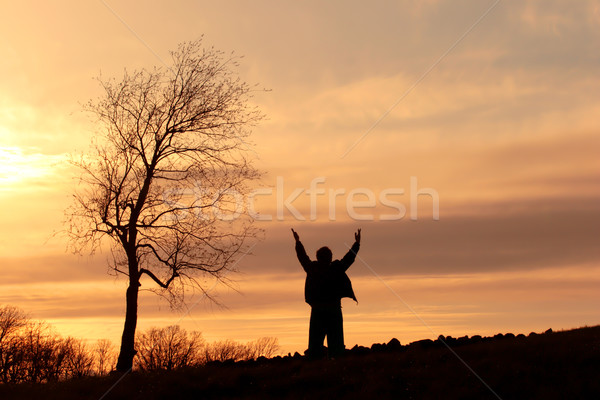 éloges silhouette homme colline permanent arbre Photo stock © soupstock