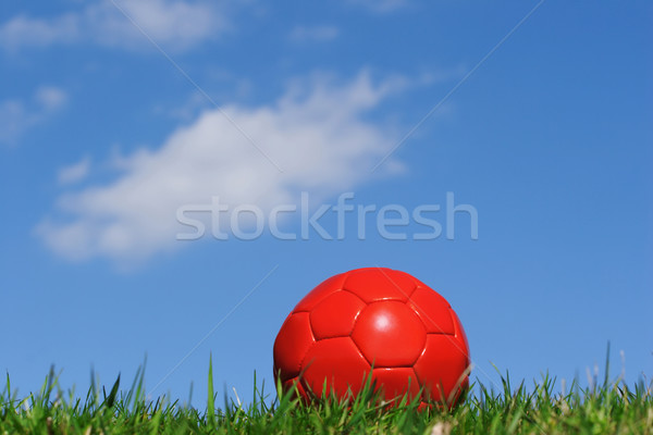 Rosso soccer ball cielo blu nubi erba Foto d'archivio © soupstock