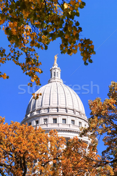 Dôme Wisconsin vue regarder automne arbres Photo stock © soupstock