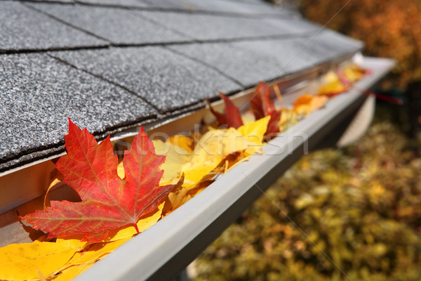 Rain Gutter full of leaves Stock photo © soupstock