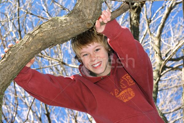 Ragazzo climbing albero sorridere ramo Foto d'archivio © soupstock