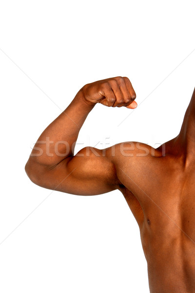 Muscle Stock photo © soupstock