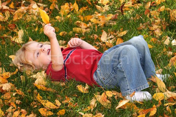 Gouden bladeren vallen blad leggen Stockfoto © soupstock