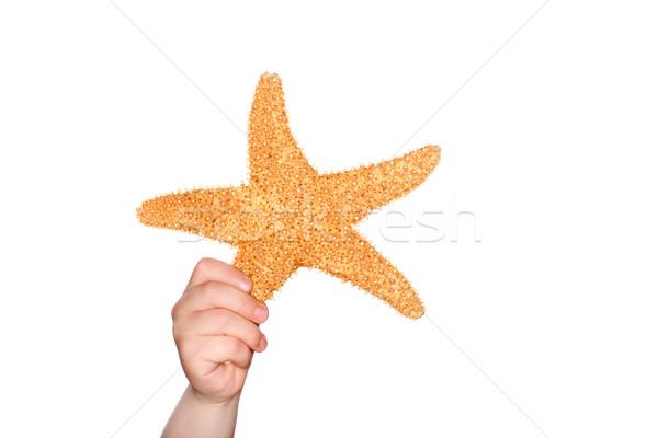Holding a Starfish Stock photo © soupstock
