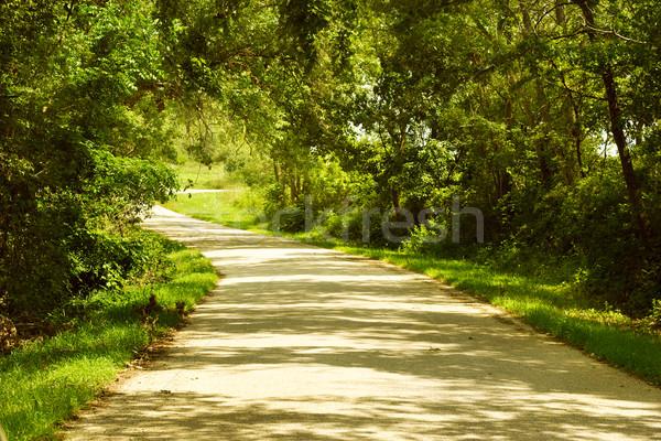Country Lane Stock photo © soupstock