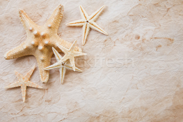 Starfish on stained paper Stock photo © spanishalex