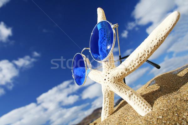 Denizyıldızı güneş gözlüğü plaj gökyüzü balık doğa Stok fotoğraf © spanishalex